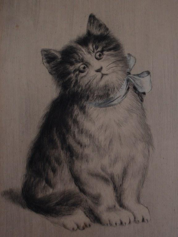 Handcolorierte radierung Junges Kätzchen mit Hummel