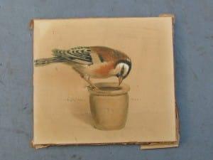 Aquarel Topfgucker (pottekijker) door Carl Schicktanz 1921-1