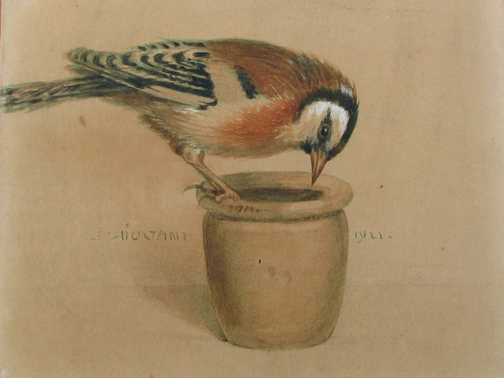 Aquarel Topfgucker (pottekijker) door Carl Schicktanz 1921-2