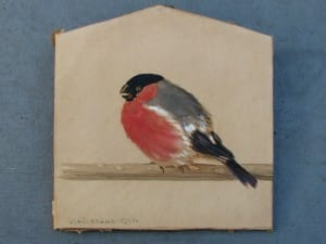Aquarel rode vink door Carl Schicktanz 1922-1