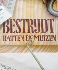POSTER 'BESTRIJDT RATTEN EN MUIZEN' BY C VAN VELSEN-3